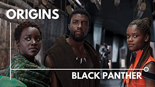 Origins: Black Panther