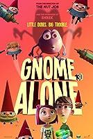 Gnomy rozrabiają – HD / Gnome Alone – Dubbing – 2017