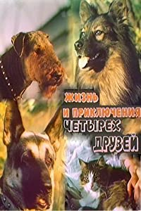 Watch free full movies no downloads Zhizn i priklyucheniya chetyrekh druzei 1. Zakadychnye vragi. 2. Nachalo puti. [mpeg]