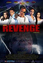 Down's Revenge Poster