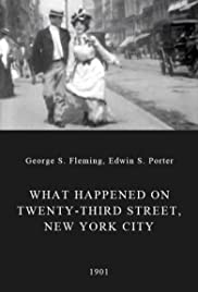 What Happened on Twenty-third Street, New York City Poster