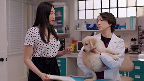 STRAYS follows Shannon Ross (Nicole Power) from Kim's Convenience as the new executive director of the Hamilton East Animal Shelter, where she is boss to an eclectic staff. Now in her 30s, Shannon is ready for a change and new challenges. She's putting Toronto in the rearview to focus on her new job, new relationships, reuniting with family and learning more about herself. Shannon's trademark positivity is put to the test as she manages an oddball team, including her apathetic cousin Nikki (Nikki Duval), her over-eager animal care manager Kristian (Frank Cox-O'Connell), her overly sheltered office manager Joy (Tina Jung) and the building's maintenance guy Paul (Tony Nappo), whose straight-faced prison humour keeps everyone on their toes.