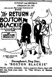 The Return of Boston Blackie Poster