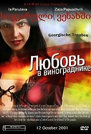 Georgian Grapes Poster