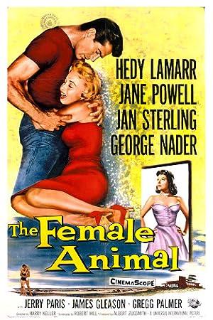 Film-Noir The Female Animal Movie