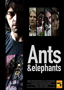 Must watch german movies Ants \u0026 Elephants [1920x1600]