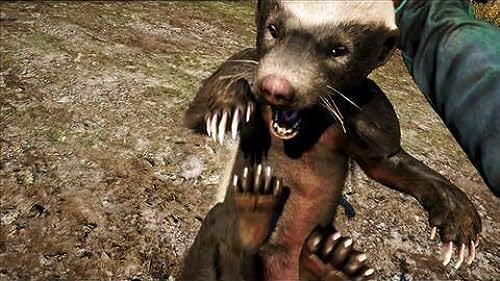 Far Cry 4 (VG)