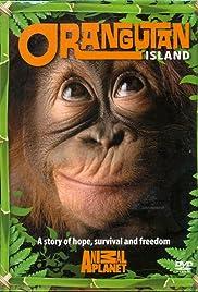 Orangutan Island Poster