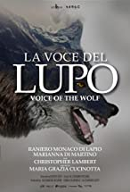 Primary image for La voce del Lupo