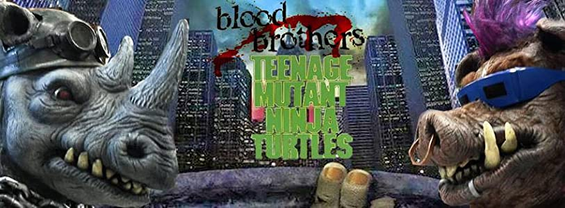 Ninja Turtles: Blood Brothers in hindi free download