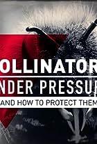 Pollinators Under Pressure