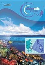 Diving Asia Cebu