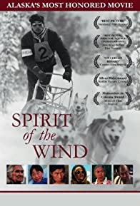 Primary photo for Spirit of the Wind