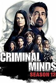 Criminal Minds: Season 12 - The Prisoner Poster