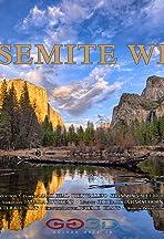 Yosemite Wild