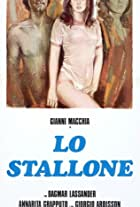 Lo stallone