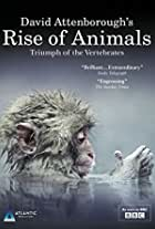 Rise of Animals: Triumph of the Vertebrates
