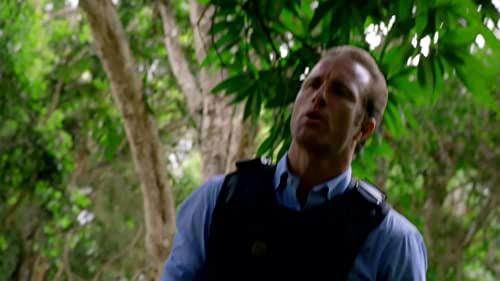 Hawaii Five-0: Why Can't You Say I'm Right