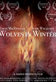 Primary photo for Wolves in Winter