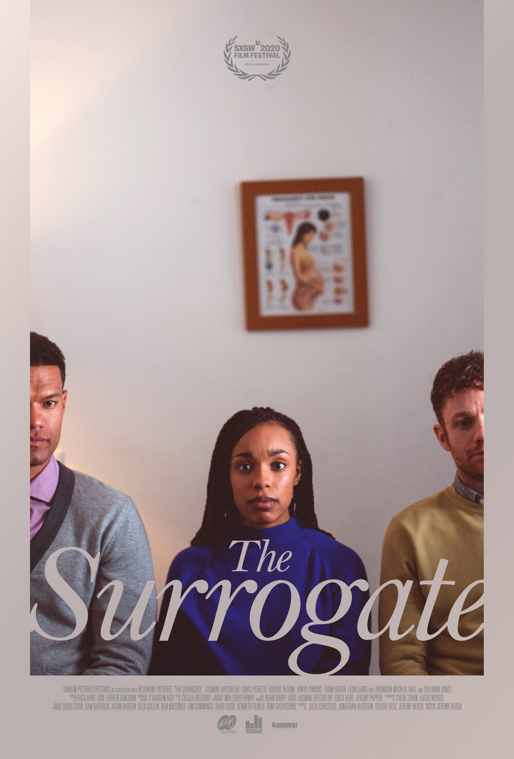 The Surrogate hd on soap2day
