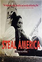 Steal America