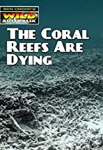 The Coral Reefs Are Dying