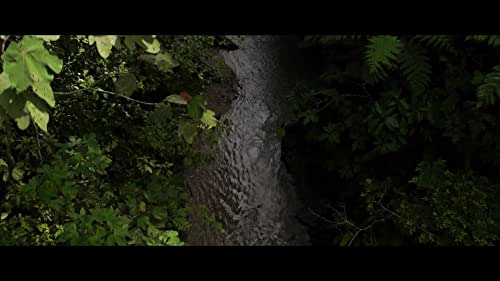TAWAI - A voice from the forest   They Call It Tawai   A film from Bruce Parry