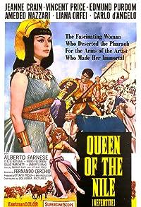 Primary photo for Nefertite, regina del Nilo