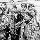The Angel of Auschwitz (2019)