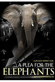 A Plea from the Elephants