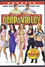 Deep in the Valley: DVD Naked Commentary