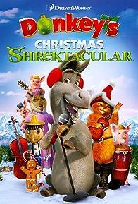 Primary photo for Donkey's Christmas Shrektacular