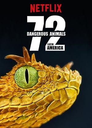 拉丁美洲 72 大危險動物   awwrated   你的 Netflix 避雷好幫手!