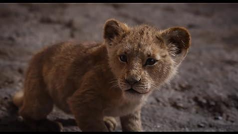 the lion king (2019) imdb Latin Singer King