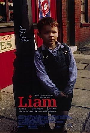 Where to stream Liam