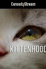 Kittenhood (2015) 720p