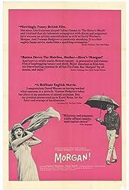 Morgan!