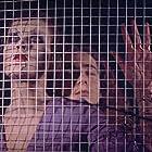 Der Tod der Maria Malibran (1972)