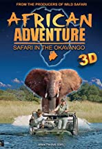 African Adventure: Safari in the Okavango
