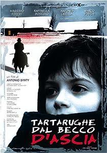 Mira freemovies ahora Tartarughe dal becco d'ascia, Massimo Foschi, Alessandro Saletta [Bluray] [1020p] [hdv]