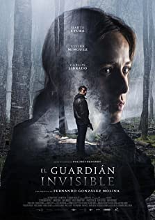 The Invisible Guardian (2017)