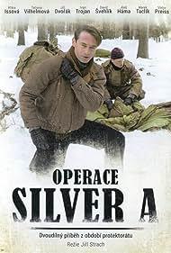Operace Silver A (2007)