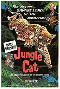 Jungle Cat USA