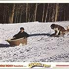 Harry Morgan in Snowball Express (1972)