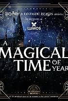 Hanukkah, O Hanukkah (A Magical Time of Year)