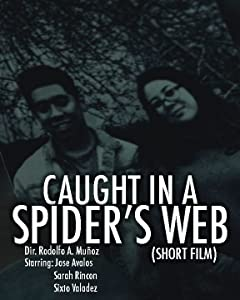 Action movie downloads free Caught in a Spider's Web [BluRay]