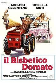 Il bisbetico domato Poster