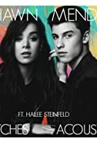 Shawn Mendes & Hailee Steinfeld: Stitches, Acoustic Version