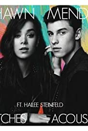 Shawn Mendes & Hailee Steinfeld: Stitches, Acoustic Version Poster