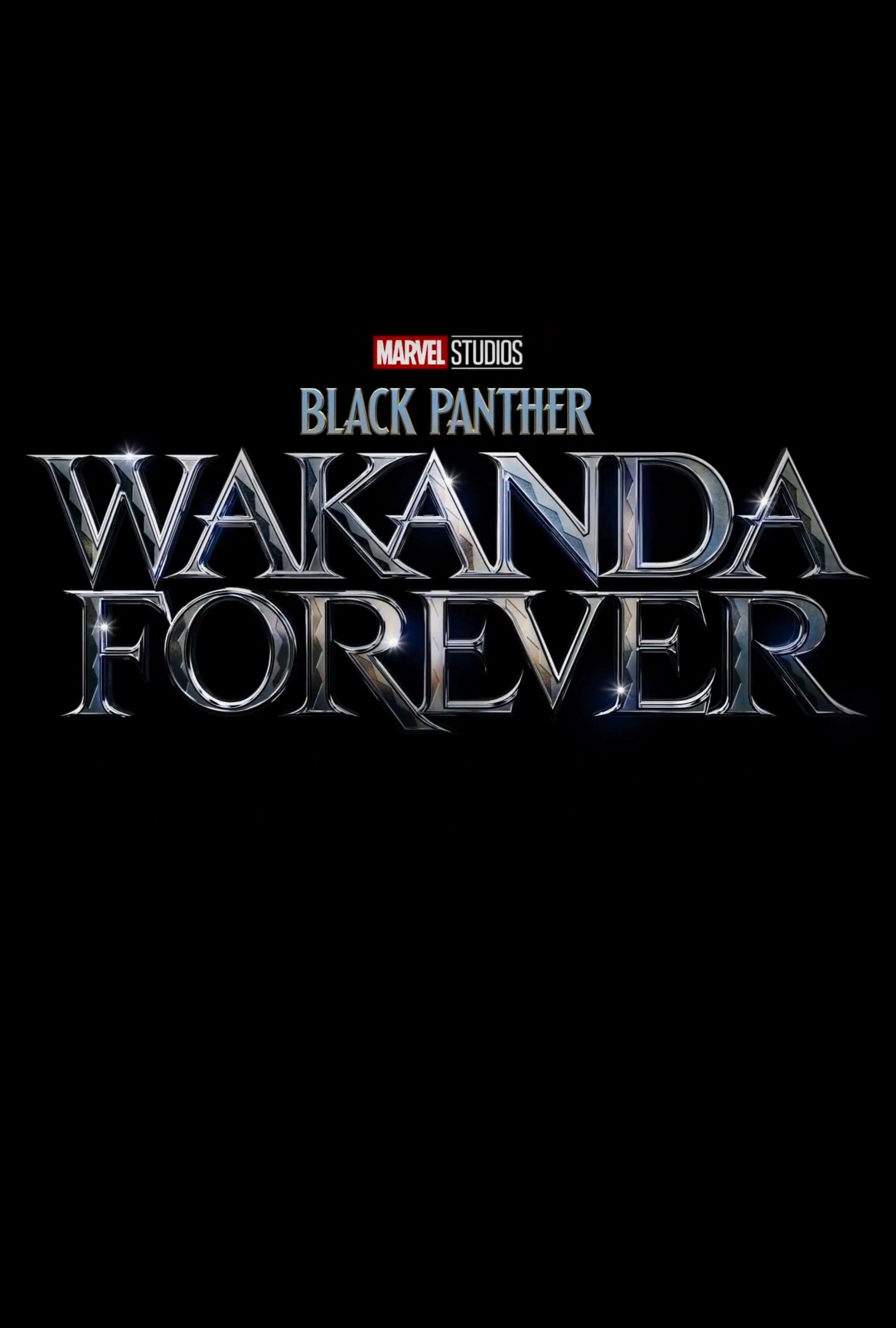 Phim Black Panther 2 Wakanda Forever - Black Panther: Wakanda Forever (2022)